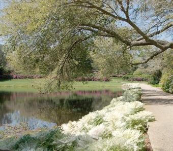https://cf.ltkcdn.net/garden/images/slide/258183-850x744-1-bellingrath-gardens-alabama.jpg