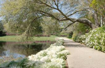 Pictures of Bellingrath Gardens in Alabama