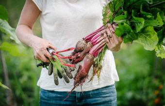 woman holding root vegetables