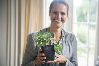 Woman posing with fresh planted cuttings