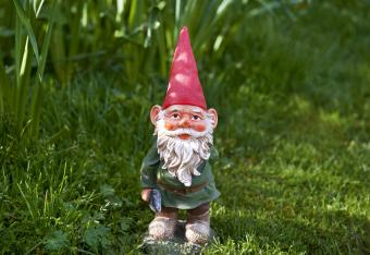 One garden gnome standing in back garden