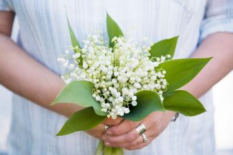 May Birth Flowers: A Look at Lily of the Valley & Hawthorn