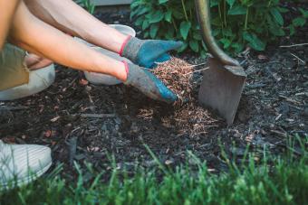 Man putting mulch into a garden