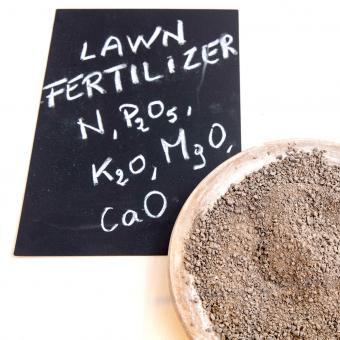 Lawn fertilizer in clay pot