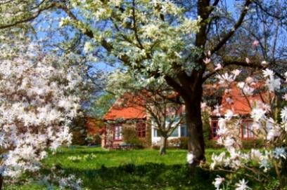 Spring_garden.jpg