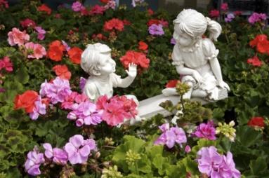 Geranium_Garden.jpg