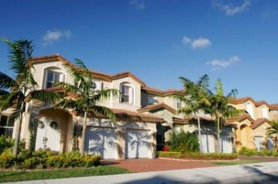 Homes with Palm Trees