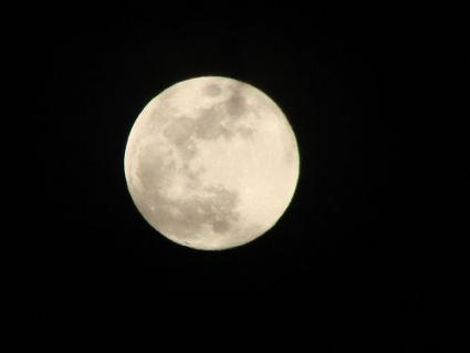 Moon phases may affect your garden