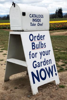 Awesome Use Mail Order Gardening Catalogs To Plan Your Next Garden.