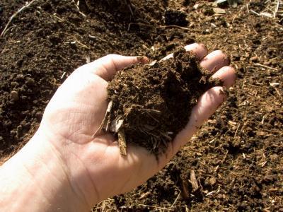 Where can i purchase mushroom compost lovetoknow for Mushroom soil