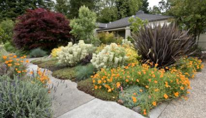 flower garden and pathways