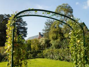 arched trellis - Trellis Design Ideas