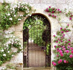 Custom 19th Century Inspired Security Gate