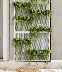 Vertical garden ideas lovetoknow creative wall garden sisterspd