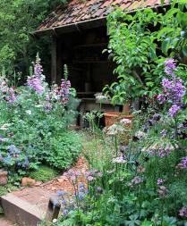 Cottage Garden with Foxglove and Delphinium