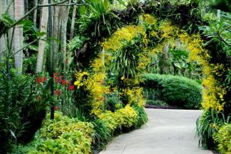 National Orchid Garden in Singapore's famed Botanic Gardens