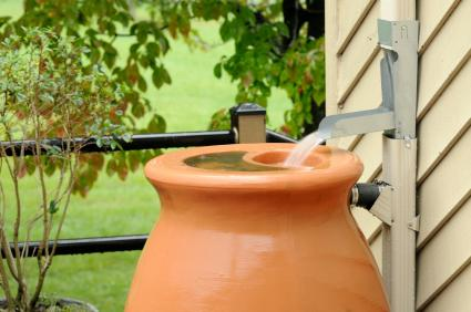 downspout with rain barrel