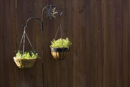pair of hanging baskets