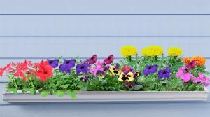 flower rain gutter garden