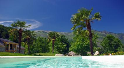 Good Landscape Plants To Use Near Pools Lovetoknow