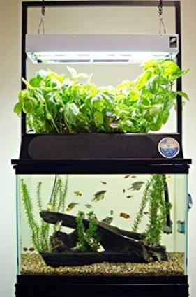 ECO-Cycle Aquaponics Kit w/ Dual T5 Grow Light