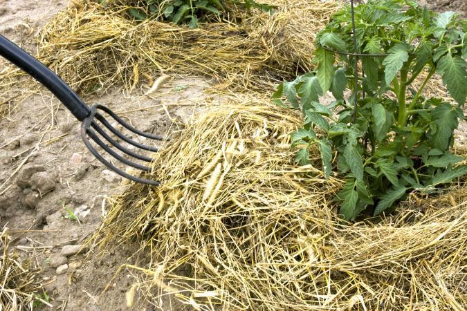Straw fork mulching plant