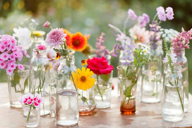 A List Of Spring Flowers Lovetoknow