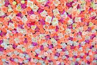 One hundred eight roses