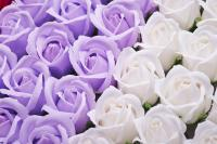 Lavender and white