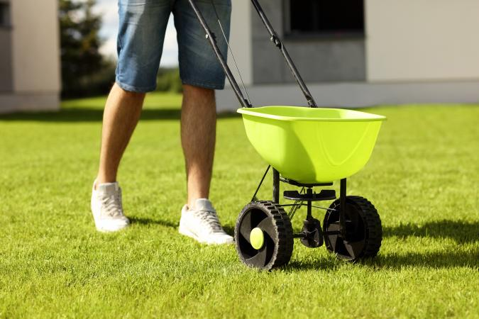 Man seeding lawn with seed spreader