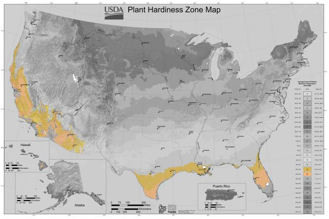 Zone 9 USDA Plant Hardiness Map