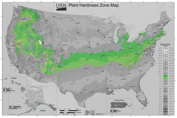 usda plant hardiness zone map zone 6
