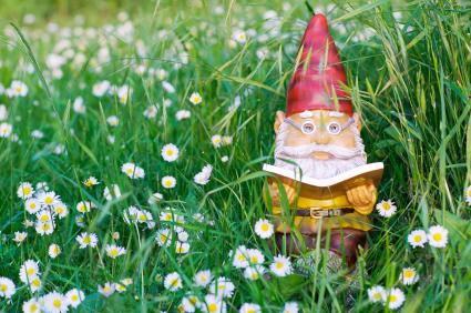 Garden Gnome reading book