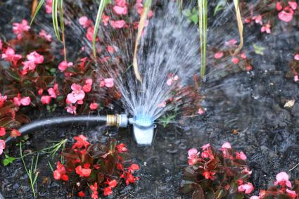 Garden sprinkler watering the outdoor flower bed
