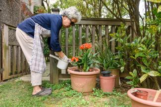Woman fertilizing plants