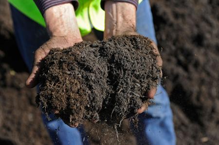 Adding compost to garden