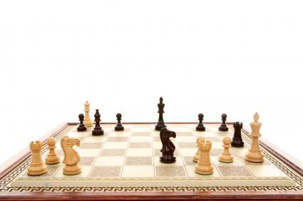 Boxwood Checker Board