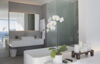 luxury home showcase interior bathroom