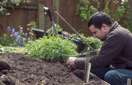 man sowing seeds in vegetable garden