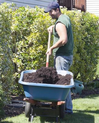 Homeowner Doing Yardwork