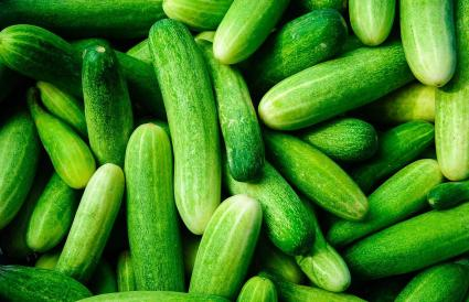 Shot Of Cucumbers