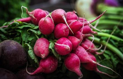 Radish on market stall