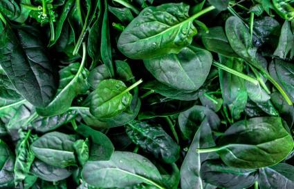 Shot Of Spinach Leaves