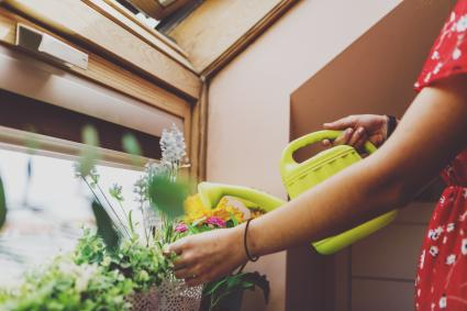 Woman using a watering can for plants