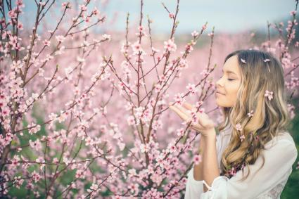 Woman posing in apricot tree orchard at spring