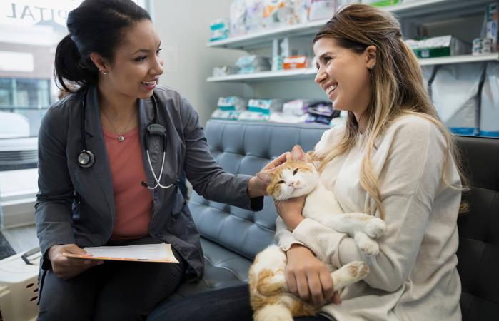 Mujer llevando a su gato al veterinario