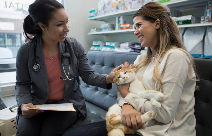 Veterinaria hablando con dueña del gato