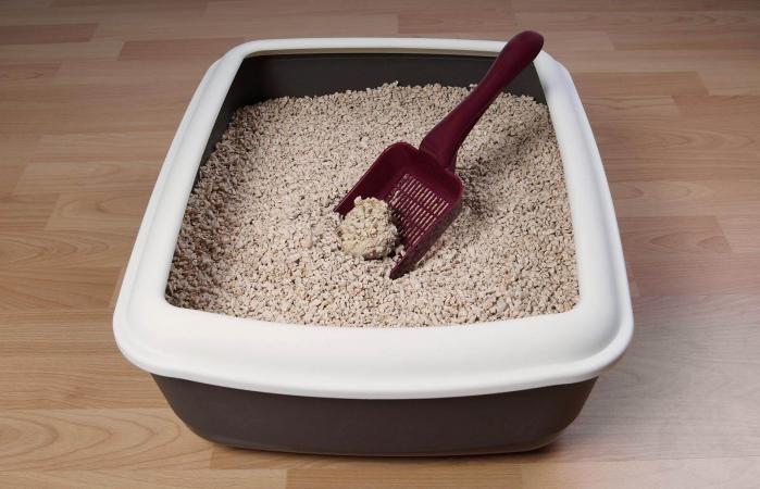 Caja de arena del gato en el piso