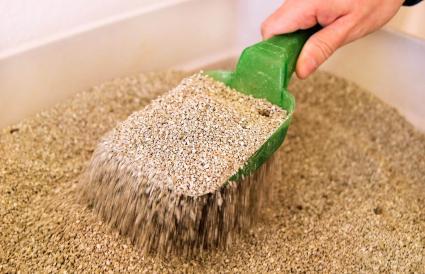 Limpiando caja de arena higiénica para gatos