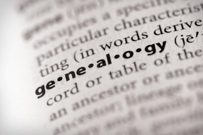 genealogy in focus in a dictionary